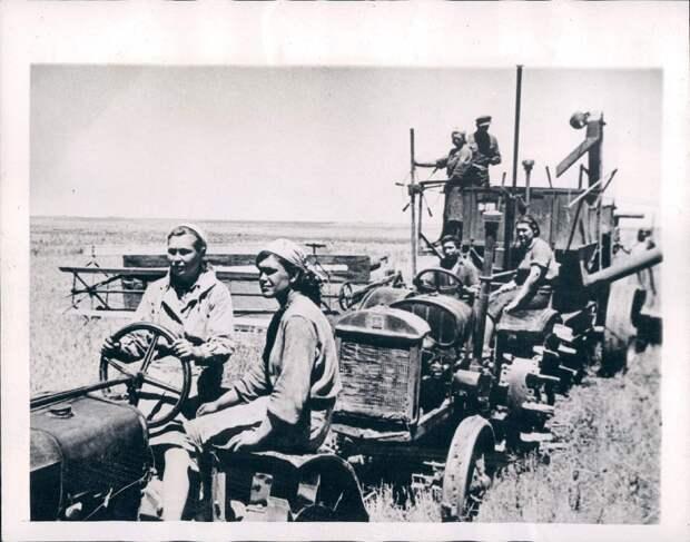1945. Кубань, Россия. Колхозники собирают урожай пшеницы