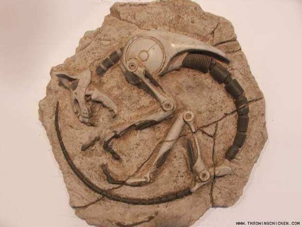 Четыре находки турецких археологов сокрушившие официальную историю.