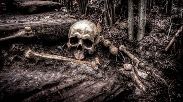Ученые рассказали правду: разгадана тайна Озера Скелетов в Гималаях