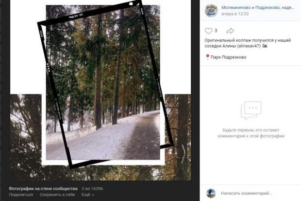 Фото дня: оригинальный коллаж из фотографий  парка «Подрезково»