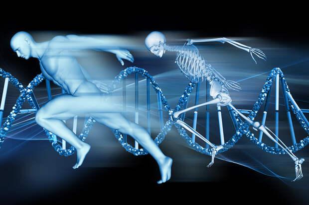 Факты о человеческом теле, от которых вам станет не по себе