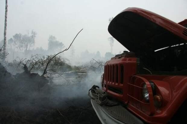 Почему наш лес горит, а в Белоруссии — нет?