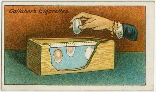 8. Как хранить яйца без холодильника выживание, инструкция, интересное, история, лайфхаки, полезное, ретро фото, советы