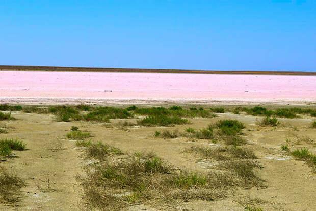 """Летом озеро пересыхает. Изображение(с)Заповедник """"Черные земли"""""""