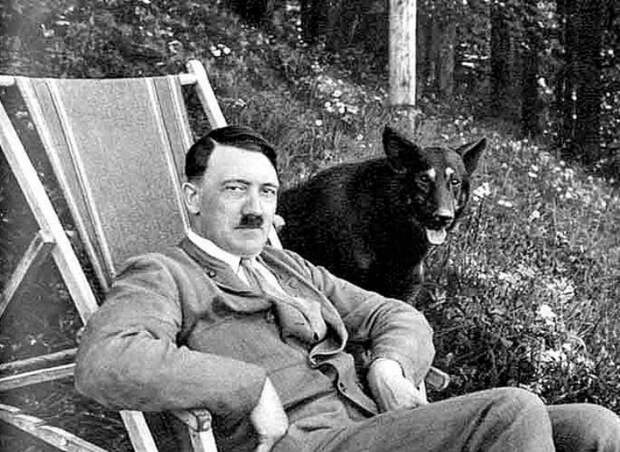 Как нацисты учили собак говорить, читать и писать