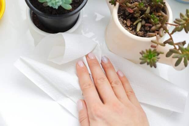 7 вещей, которые нельзя делать с бумажными полотенцами
