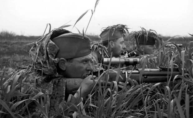 sniper_09.jpeg