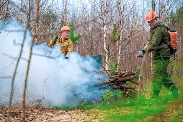В Тверской области прошли командно-штабные учения подразделений МЧС