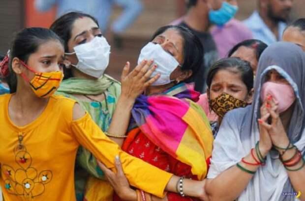 В объективе Индия — октябрь 2020