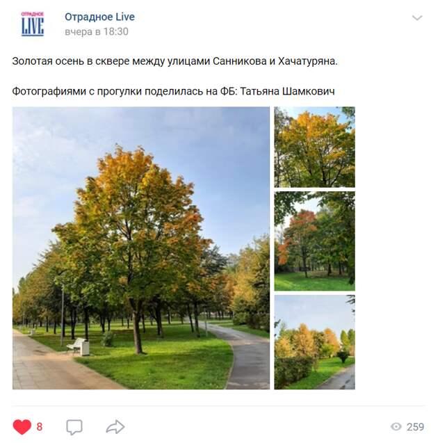 Фото дня: осень в сквере на Хачатуряна