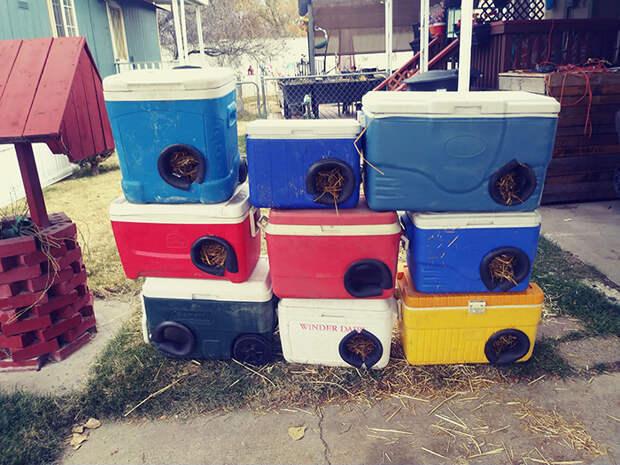 Мужчина делает зимние приюты для бездомных кошек из выброшенных кулеров