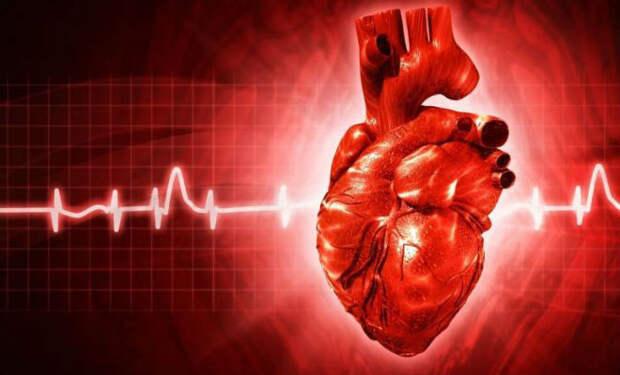 Сохраняем сердце здоровым