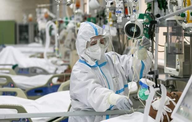 Более 25 миллионов человек в мире заразились коронавирусом