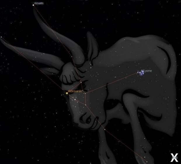 Галактическая Федерация света - кто они?