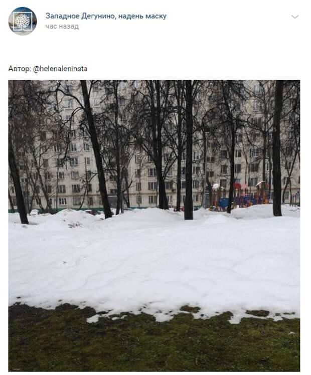 Фото дня: зима и весна встретились на Коровинском шоссе