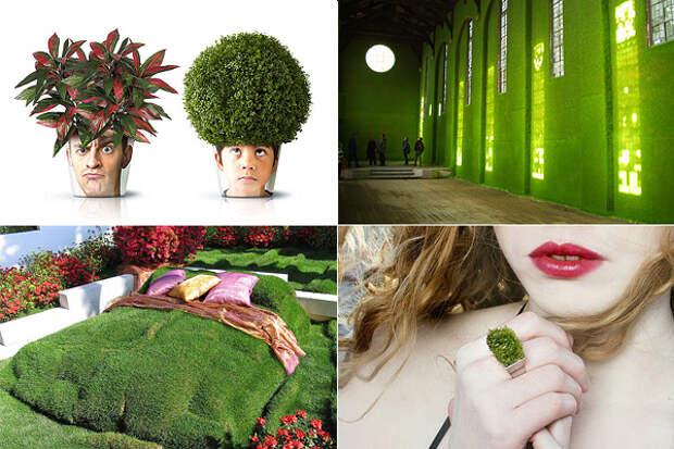 Дизайн, вдохновленный природой.