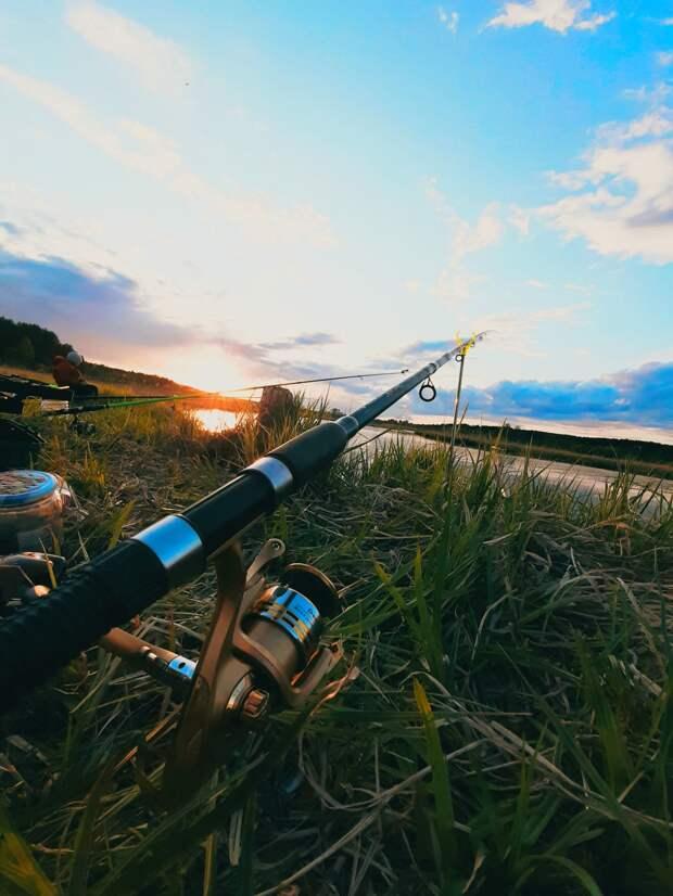 Где водится и клюет: топ-5 групп о рыбалке в Удмуртии
