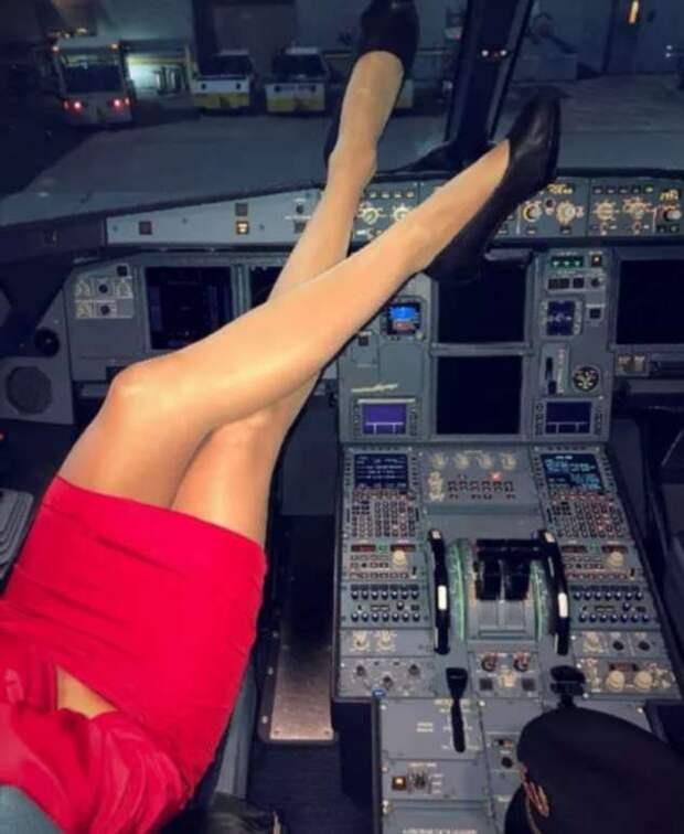 Ножки стюардесс. Подборка chert-poberi-styuardessy-chert-poberi-styuardessy-33360108022021-1 картинка chert-poberi-styuardessy-33360108022021-1