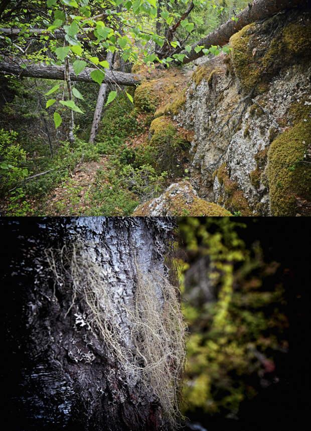 Какие они, архангельские грейдеры? Спускаемся в пещеры в Пинежском заповеднике