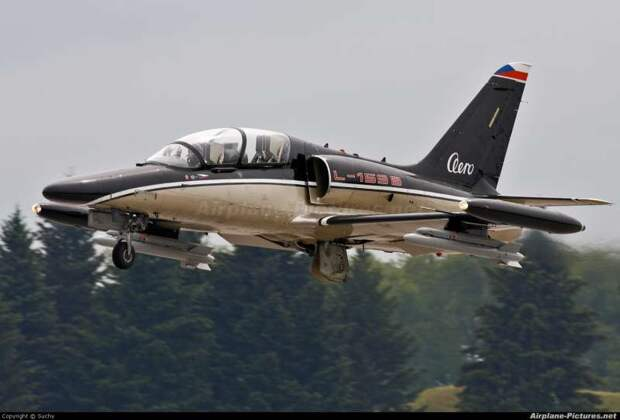 L-159B.jpg