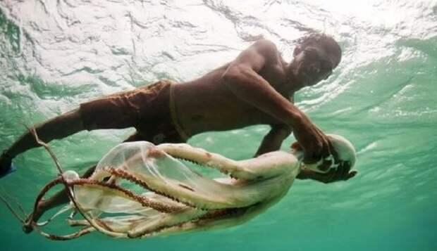 индонезия ныряльщики баджо