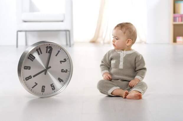 Биологические часы у ребенка