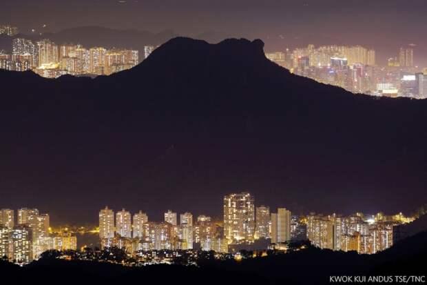 Мой дом, мой город. Ночной вид из кантри-парка «Львиная скала». Фото: Квок Куи Андус Це (Гонконг), победитель в категории «Города и природа».