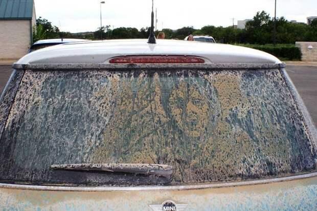 Грязное стекло автомобиля. /Фото: m.fishki.net.