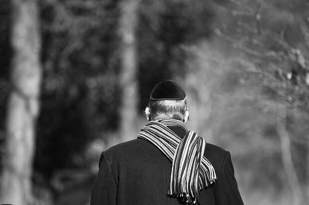 Антисемитизм без границ (2) (12 статей)