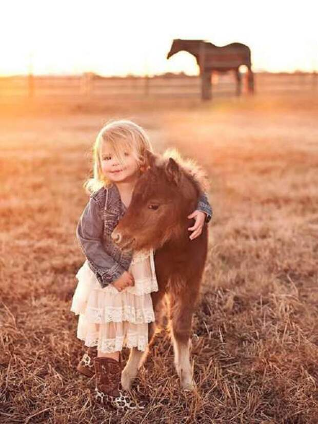 Уберите детей от экранов: 30 мимими мини-лошадей