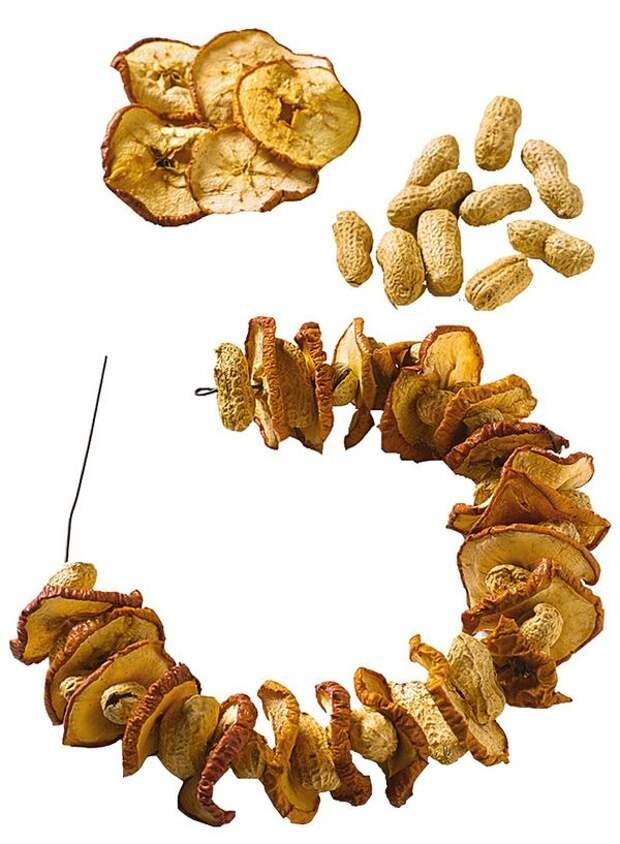 Орехи и сушеные яблоки