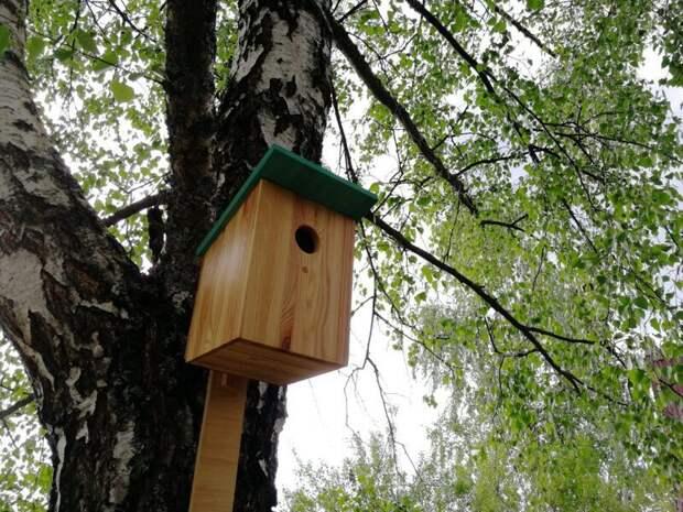 Скворечник без щелей и гвоздей день птиц, дом птиц, мастерская на балконе, рукоделие, своими руками, скворечник, скворечники