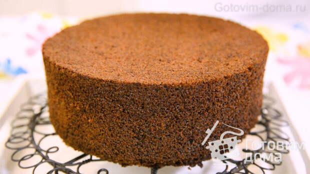 Сочный Шоколадный Бисквит фото к рецепту 17