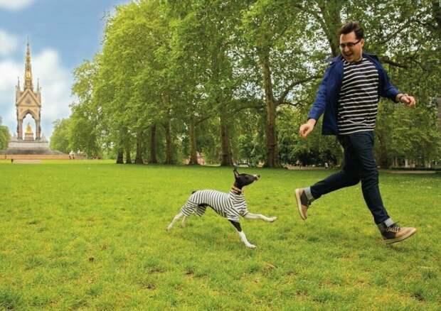 29 смешных фото, доказывающих, что жизнь с собакой полна позитива