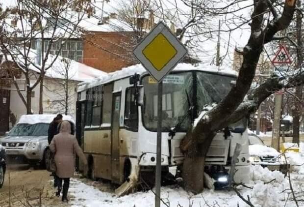 В Краснодаре маршрутка врезалась в дерево: есть пострадавшие
