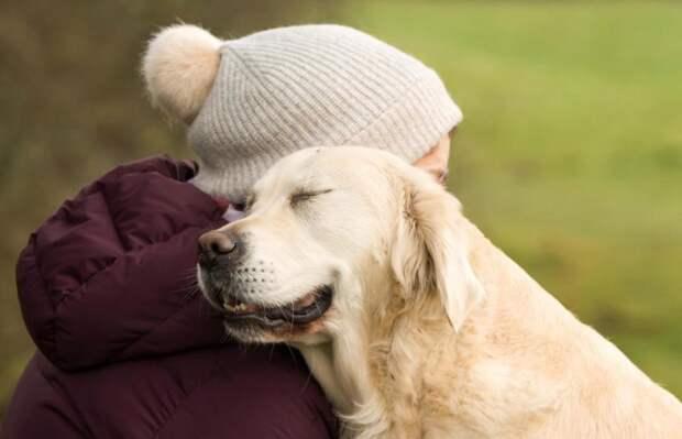 Третье место в категории «Лучший друг человека» великобритания, животные, интересное, конкурс, собака, собаки