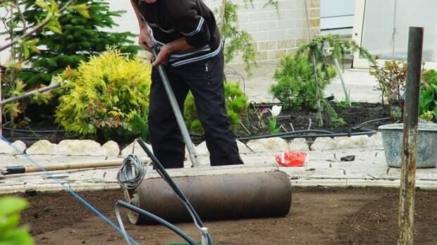 Чтобы газон радовал глаз: подготовка почвы
