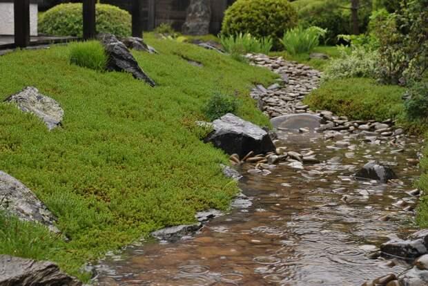 садВдождливую погоду сухой ручей превращается вмокрый.