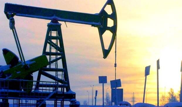 Россия сократила добычу нефти на0,6% задве недели февраля 2021