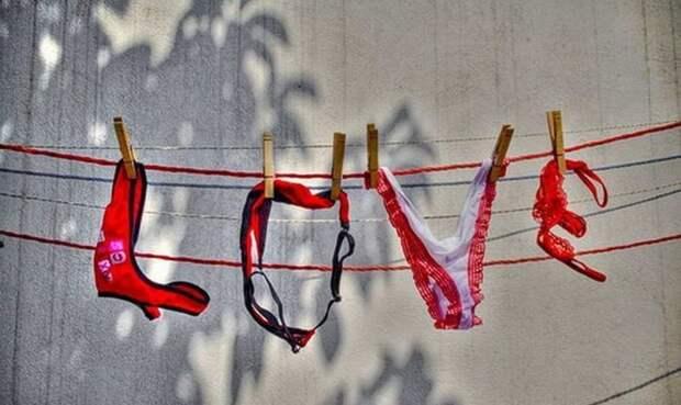 Любовный переполох жизненно, интересный рассказ, смешная история