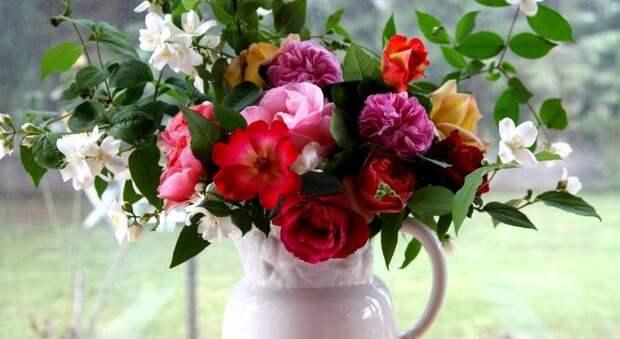 Как живые цветы в вазе влияют на самочувствие и настроение домочадцев