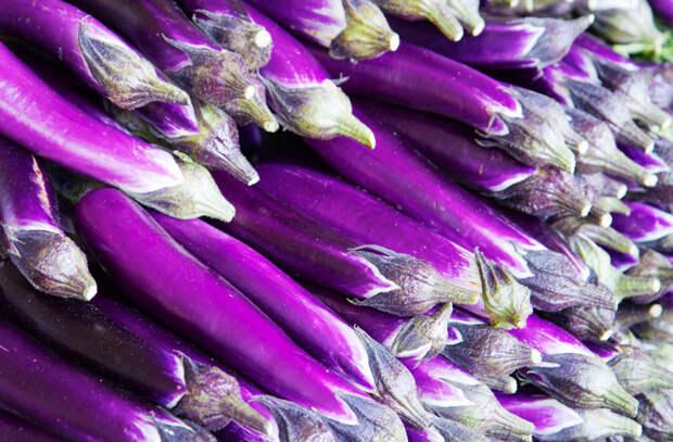 Самые вкусные сорта баклажанов
