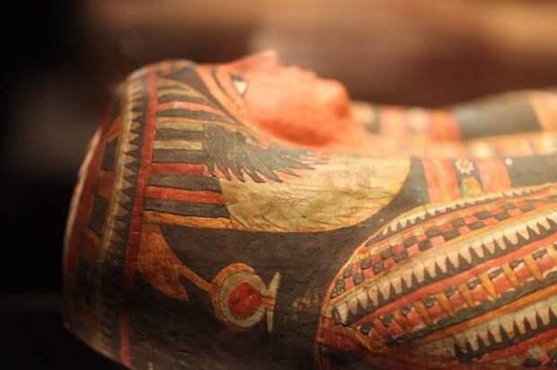 Египетский палец и другие протезы, которые вошли в историю человеческой цивилизации