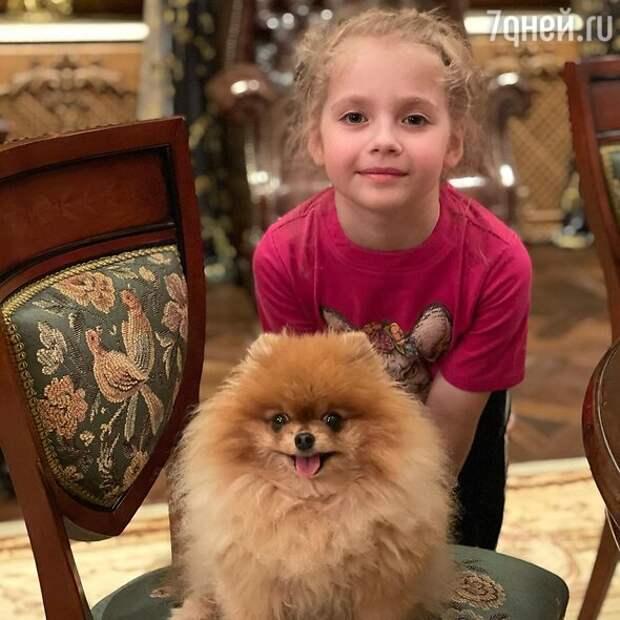 «Собака — друг человека»: российские звезды со своими питомцами