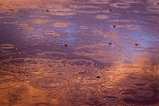 Вовремя ли во дворе устраняется подтопление после дождя? — новый опрос