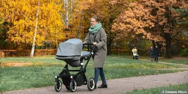 Собянин упростил порядок получения льготного статуса для многодетных семей