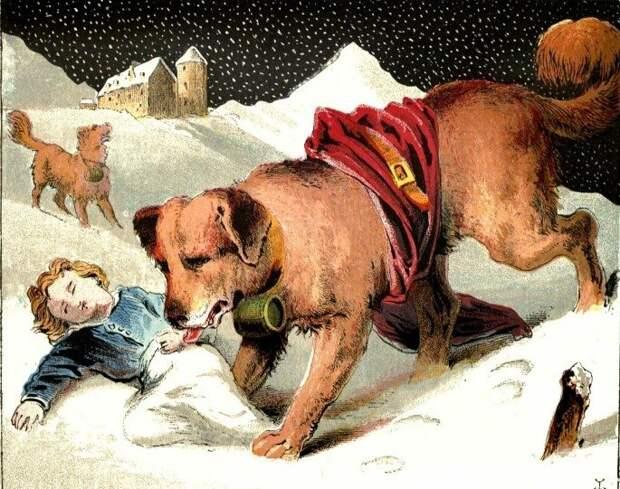 Почему весь город кормил эту собаку до самой старости?