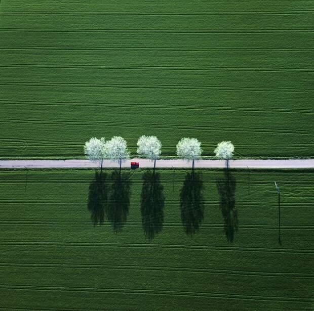20  минималистических фотографий, на которых нет ничего лишнего
