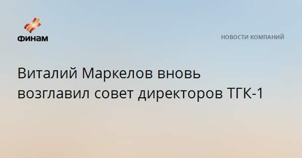Виталий Маркелов вновь возглавил совет директоров ТГК-1