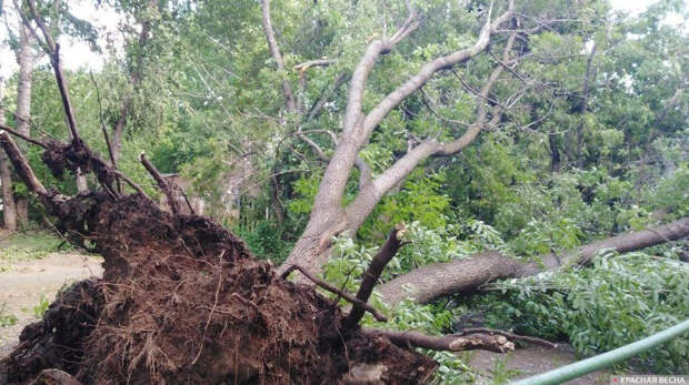 На штат Парана в Бразилии обрушился ураган